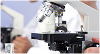 Croissance de moisissures au microscope